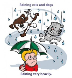 Weather idioms: raining cats and dogs
