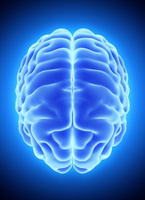 3D blue brain